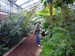 Gewächshaus Botanischer Garten in Köln