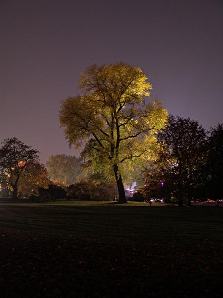 Köln Park bei Nacht