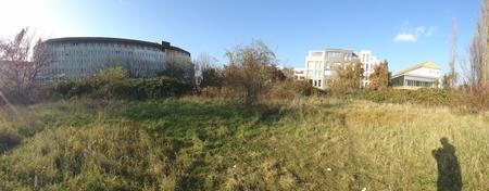 im Herzoginnengarten