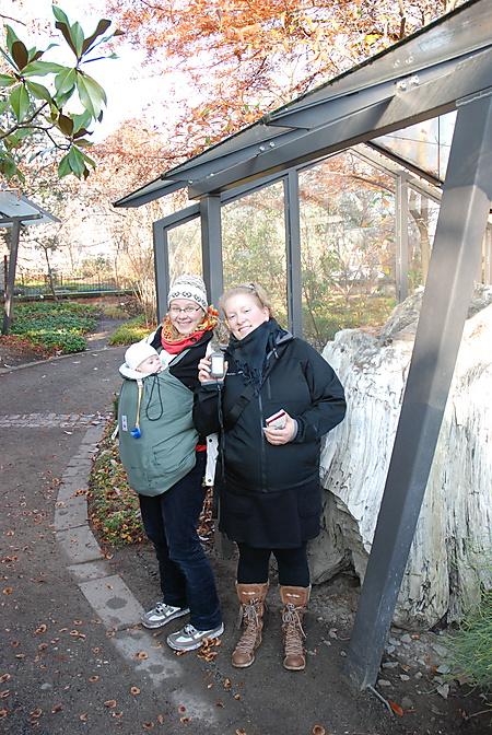 Earthcache im Botanischen Garten, Dresden