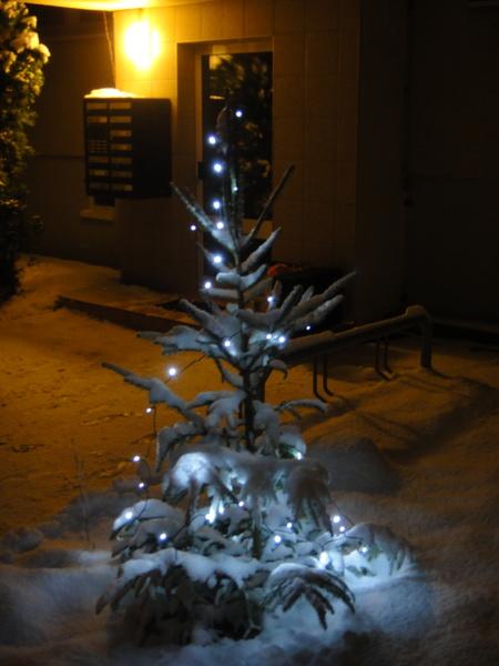 Weihnachtsbäumchen mit Lichterkette