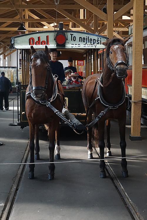 Pferdebahn im Museum in Prag