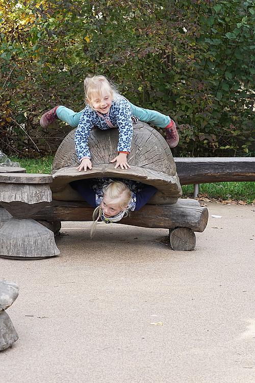 Alina Schildkröte