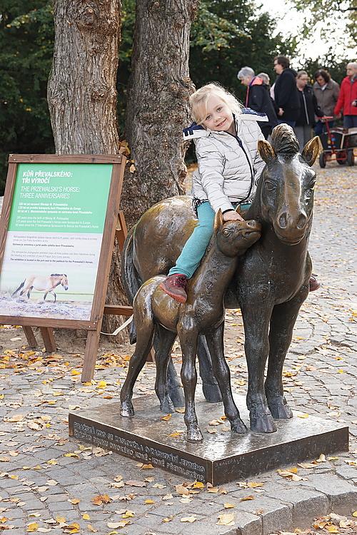 Bronze Przewalski-Pferd, Zoo Prag