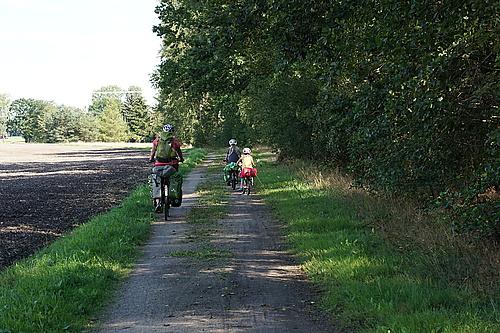 Zwischen Wald und Feld hinter Niesky