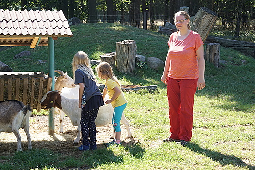 Willy im Ziegen- und Wildtierpark Thräna