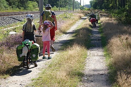 eidechsen begucken auf dem Radweg
