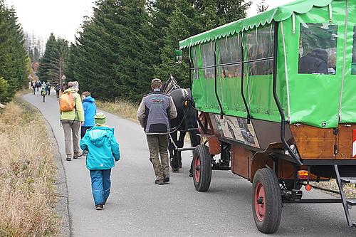 Kutsche auf der Brokenstrasse
