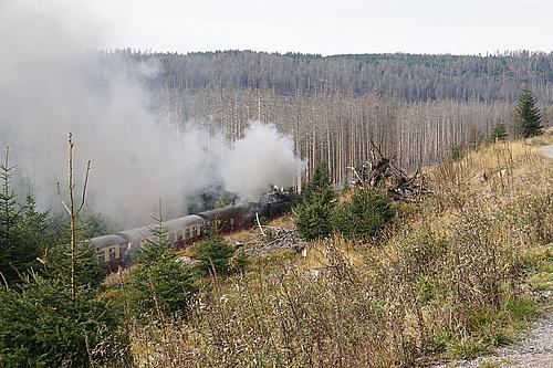 Brockenbahn am Bahnparallelweg Brocken