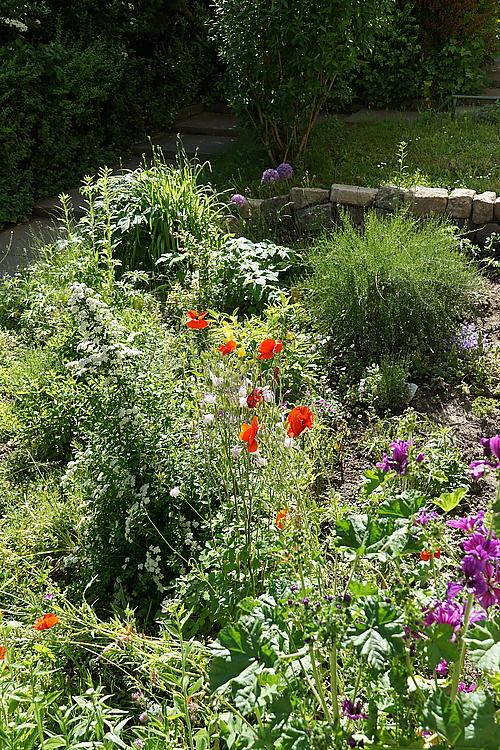 mein bunter Vorgarten